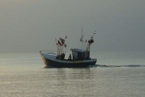 Rybacy protestowali ws. kar za połowy dorsza w 2007 r.