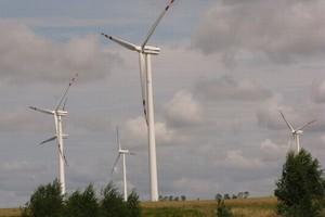 Polacy coraz chętniej korzystają z ekologicznych rozwiązań