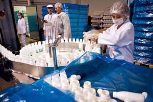 Wzrasta produkcja przetworów mleczarskich, prócz śmietany