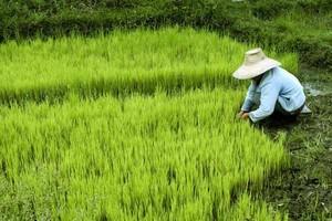 Ekspansja zagraniczna: Chiny - rynek dla cierpliwych