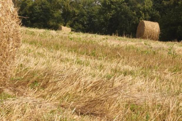 Rząd przyjął projekt o składkach zdrowotnych dla rolników