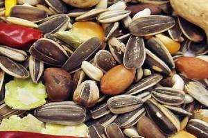 Polska pozwana do ETS za niewdrożenie przepisów o ochronie nasion warzyw