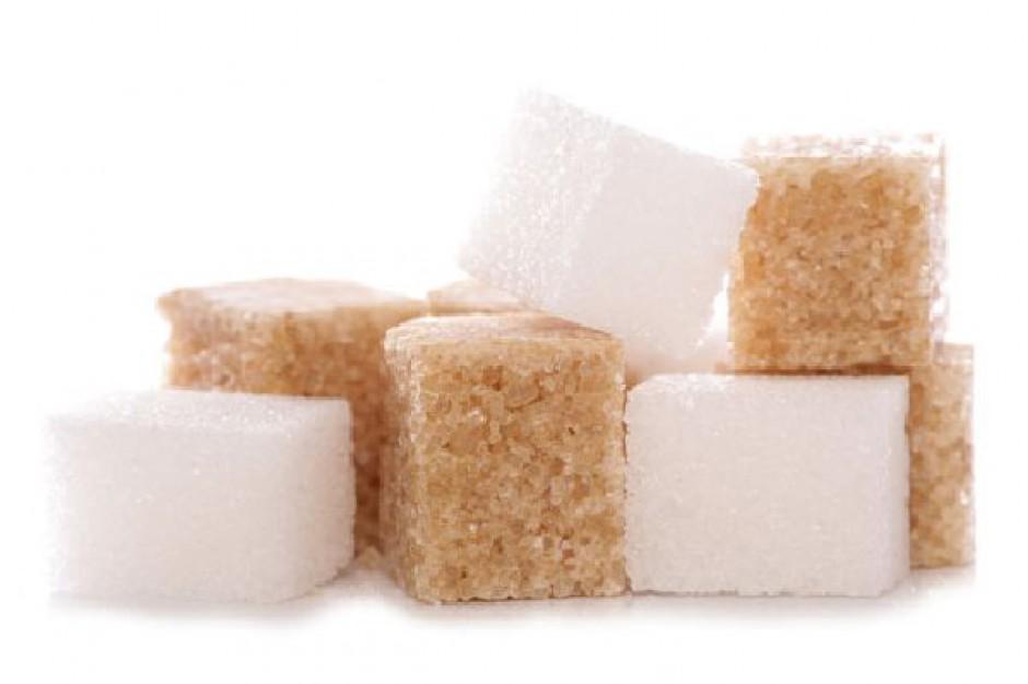 Analitycy: W sezonie 2012/13 możemy spodziewać się podwyżek cen cukru