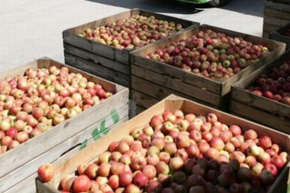 Niskie temperatury znacznie zwiększają koszt transportu warzyw i owoców