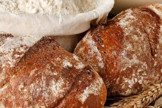 Rynek zbóż ciągle niestabilny. Jak radzą sobie z tym młyny, producenci kasz i makaronów?