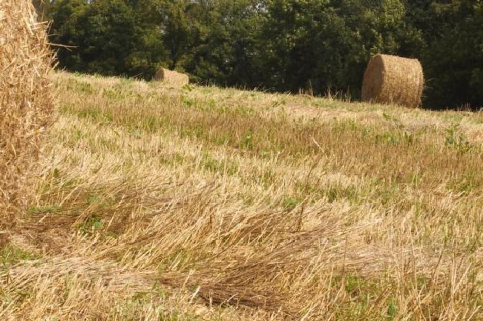 Coraz więcej rolników stosuje biopreparaty