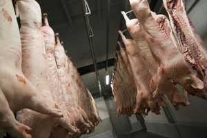 Rosja rozważa wprowadzenie zakazu importu wieprzowiny z UE