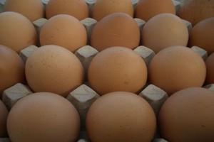 Koszyk cen: W jakiej sieci sklepów można najtaniej kupić 10 jaj?
