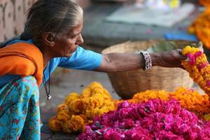 Umowa o strefie wolnego handlu UE - Indie możliwa już w tym roku?