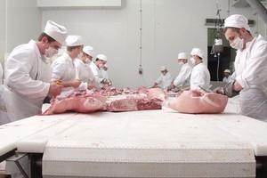 ZM Salus przygotowane do przeprowadzania certyfikacji Systemu Gwarantowanej Jakości Żywności QAFP