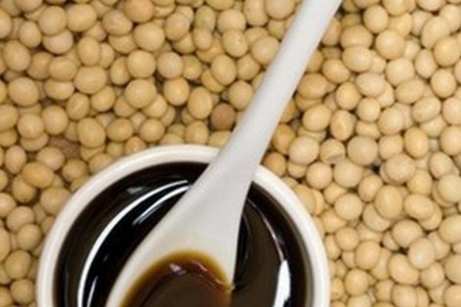 Światowe zbiory soi spadną, w UE zmniejszy się jej przerób