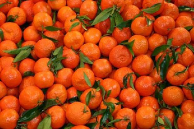 Rośnie eksport hiszpańskich owoców i warzyw poza UE