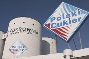 Jaką strategię przedstawi nowy prezes KSC? Spółka planowała przejęcia i inwestycje w biopaliwa