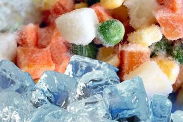 Spada eksport polskich mrożonek warzywnych i owocowych