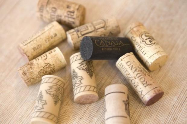 Winiarstwo w Polsce wciąż rozwija się powoli