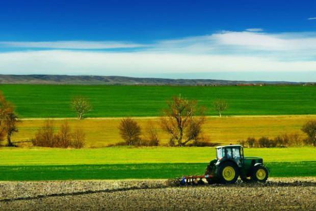 Ziemia rolna podrożała pięciokrotnie