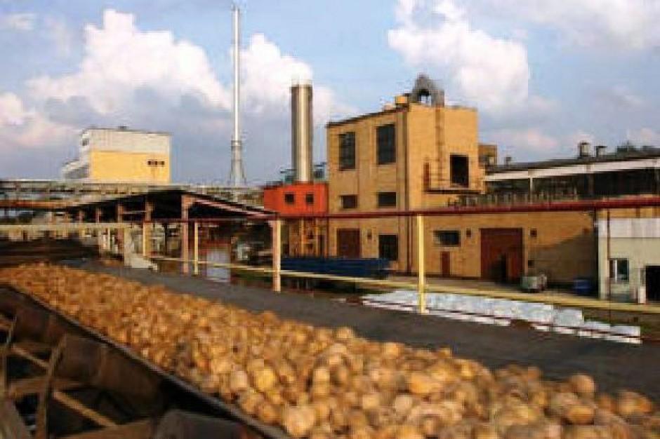 Pepees: Wzrosły koszty zakupu ziemniaków skrobiowych