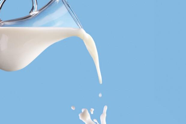 Branża mleczarska na krawędzi
