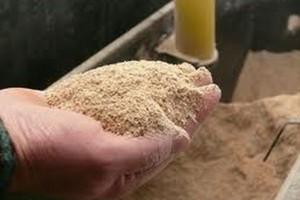 Ustawa o paszach. Zwierzęta będzie można karmić paszami GMO do końca 2016 r.