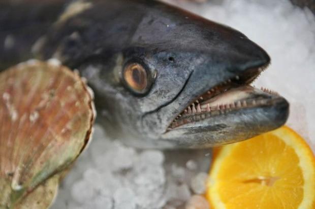 Zapotrzebowanie na ryby przewyższa dostępne zasoby