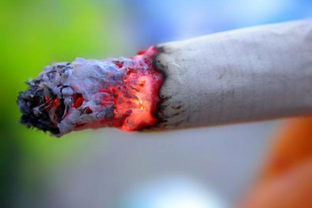 Na nielegalny tytoń może przypadać nawet 18 proc. rynku papierosów w Polsce