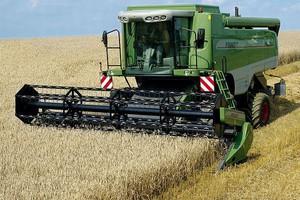 Minister rolnictwa: Ceny zbóż w Polsce pozostaną wysokie