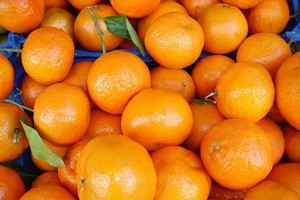 Globalna produkcja pomarańczy skurczy się o 7 proc.