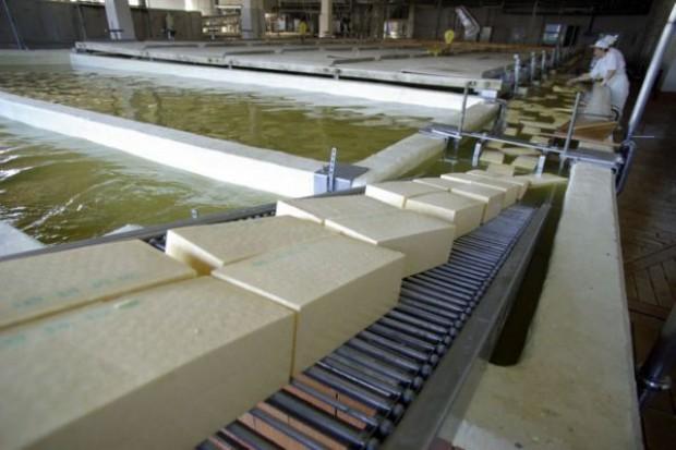 Wzrosła produkcja przetworów mleczarskich
