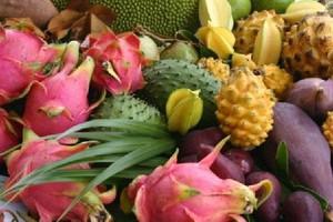 Raport FAO: Światowa produkcja owoców tropikalnych rośnie ok. 1,7 proc. rocznie