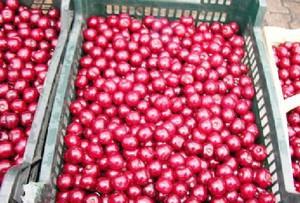 Eksport mrożonych wiśni do USA wzrósł czterokrotnie