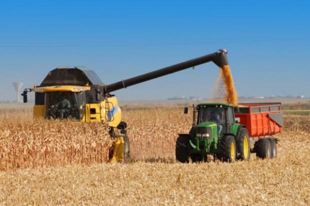 Krajowa produkcja zbóż w 2012 r. o 6,6 proc. wyższa rdr