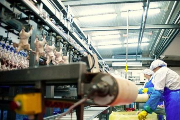 Res-Drob zwiększa produkcję o ponad 30 proc.
