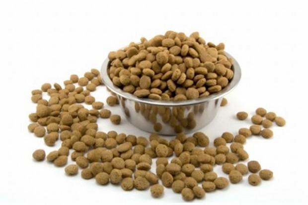 Rynek karmy dla zwierząt nie zamierza wyhamować