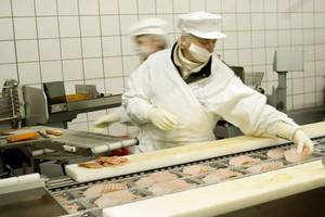 Firmy spożywcze najmocniej inwestują w końcówki linii