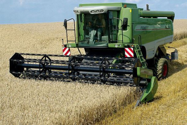 Perspektywy światowej produkcji zbóż na 2013 r. są korzystne