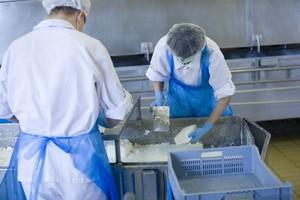 Handel międzynarodowy przetworami mleczarskimi wyhamował