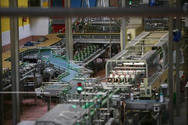 Rośnie popyt na maszyny produkcyjne i pakujące dla żywności i napojów