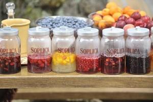 CEDC: Rekordowe wzrosty sprzedaży marki Soplica