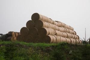 Agroton wypracował 6,76 mln USD zysku w 2012 r.