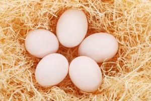 Były prezes Agros Novy sprzedaje jaja 'wolne od GMO'