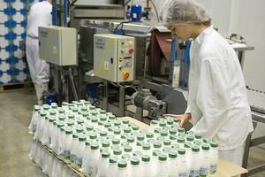 Mleczarstwo w Polsce po zniesieniu kwot mlecznych