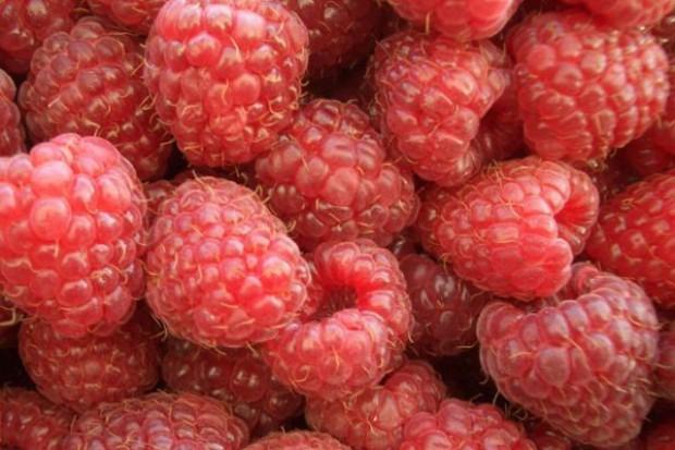 Polski eksport mrożonek warzywno-owocowych
