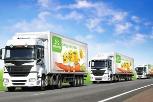 Stokrotka ma nowy system logistyczny i wizualizację dla sklepów