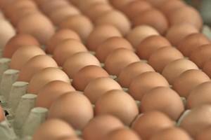 Ceny jaj spożywczych nieco wzrosły
