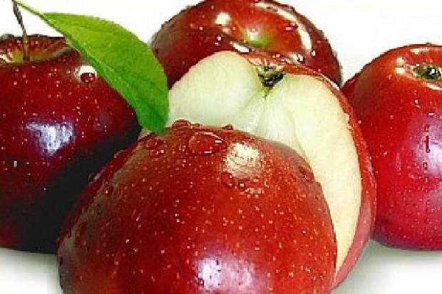 Doskonały sezon dla producentów koncentratu jabłkowego