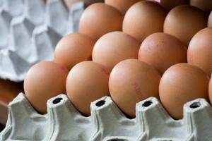 Ukraińscy producenci jaj coraz mocniejsi