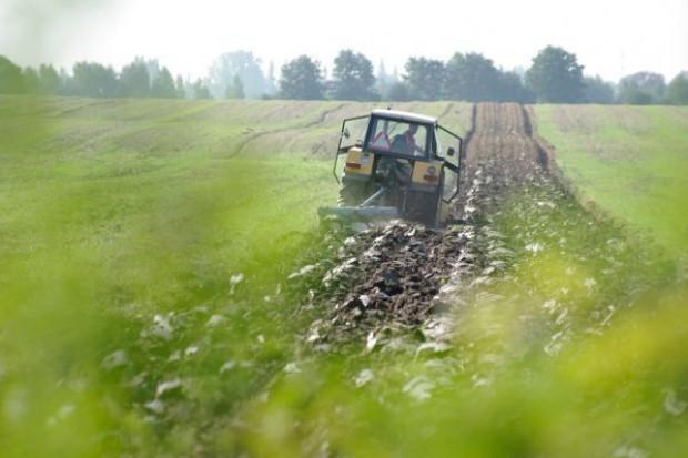 Ziemia rolna w Polsce wciąż atrakcyjna