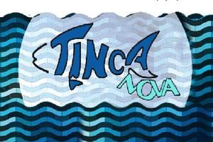 Właściciel Tinca Nova: Rynek ryb znacznie się zmienił