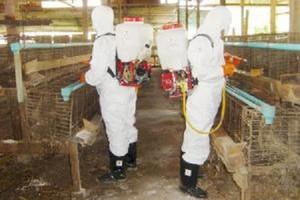 Producenci żywności muszą się chronić przed szkodnikami