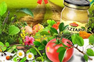 Roleski: Sektor przetwórstwa warzywno-owocowego jest rozwojowy